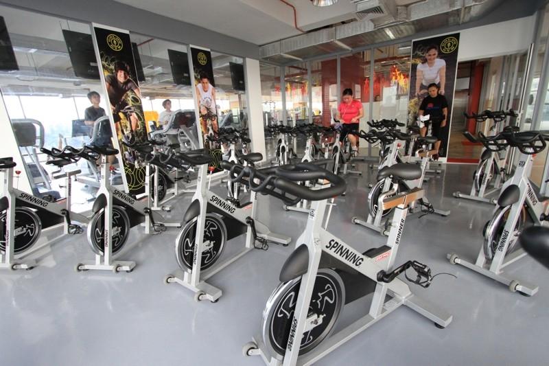 stay profita golds gym - 800×533